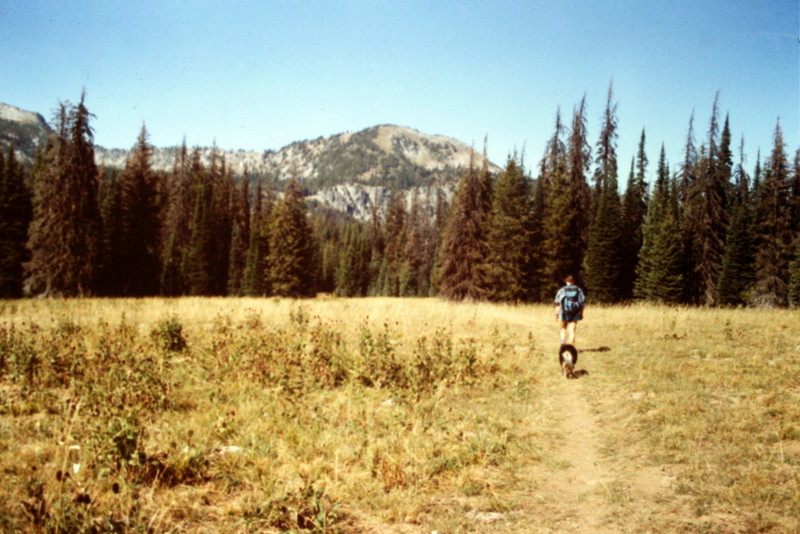 The hike into Hard Butte crosses large meadows.