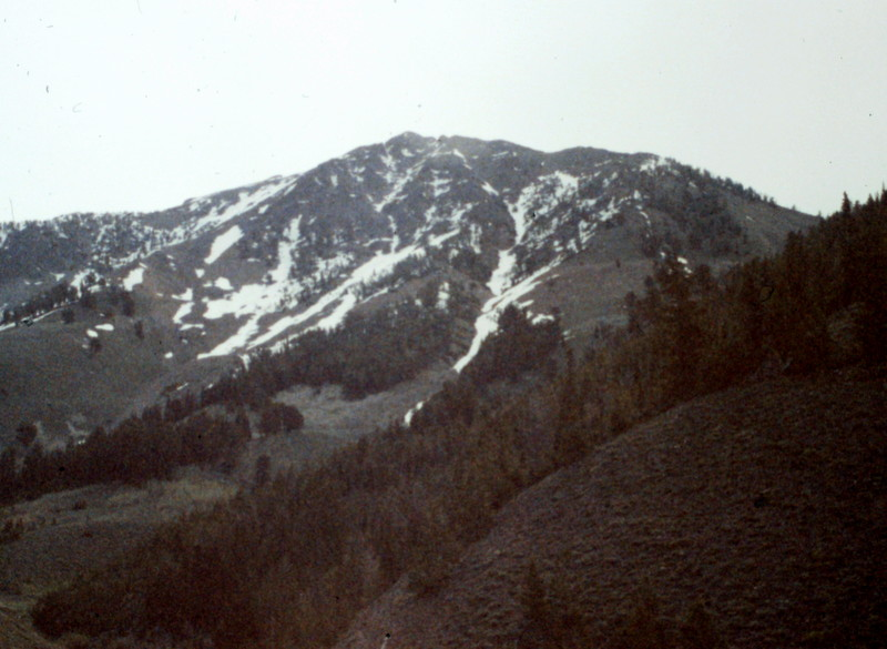 The west face of Scorpion Mountain.