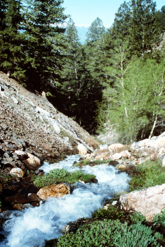 I have not traversed Sawmill Gulch since 1993 but recent reports state the road and the trail are still in passable condition. As far as scenery goes, the trail crosses some great country.