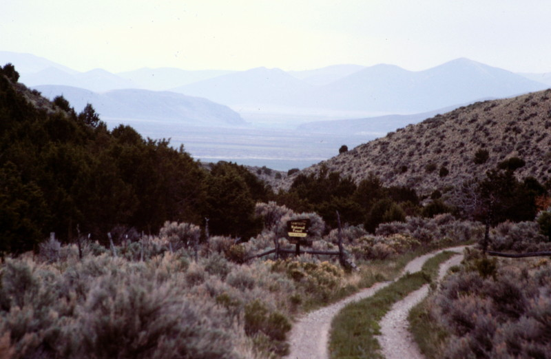 The best access to the Black Pine Mountain crest and also Gunnel Mountain is via Kelsaw Canyon on the ranges southwest corner.