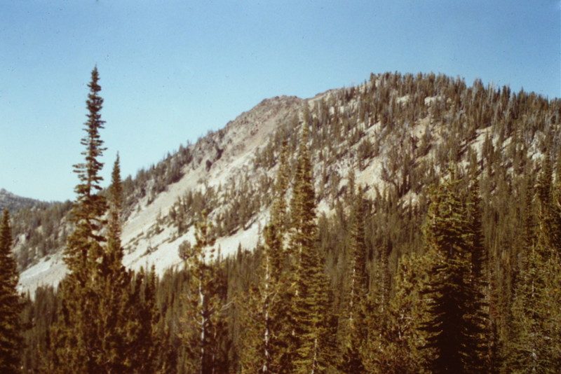This is a view of the peak just south of Thunderbolt from the trail.