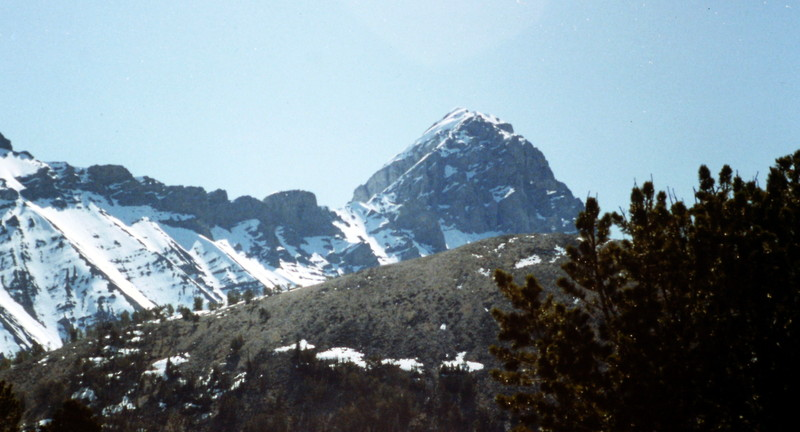 Bad Rock Peak viewed from the slopes above Sawmill Gulch.