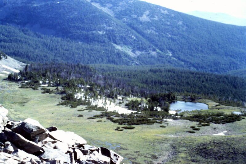 From the ridge you will have a great view of the upper portion of the Bear Creek drainage to the northeast.