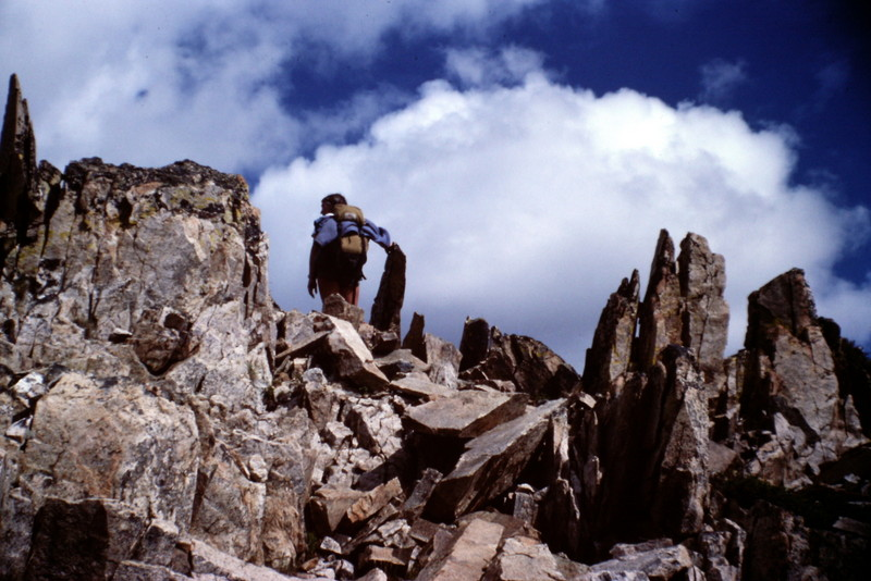 The spike covered summit of Mount Loening.