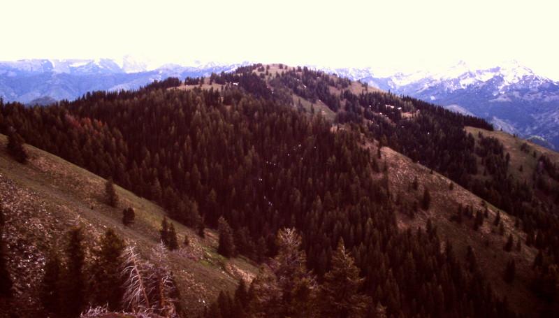 Jumbo Mountain.