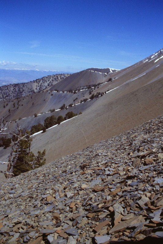 Once above treeline on the west face route, the view begins to open up and you can look north across the face of the range.