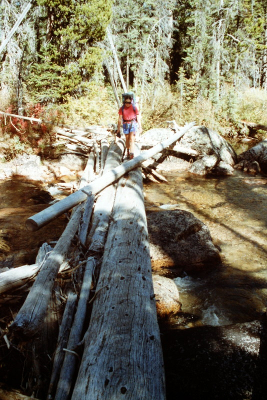 In the 1994 there were large logs laying across Redfish Lake Creek and the crossing was easy in low water.