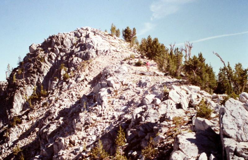 Nahneke's summit from lower down on its north ridge.
