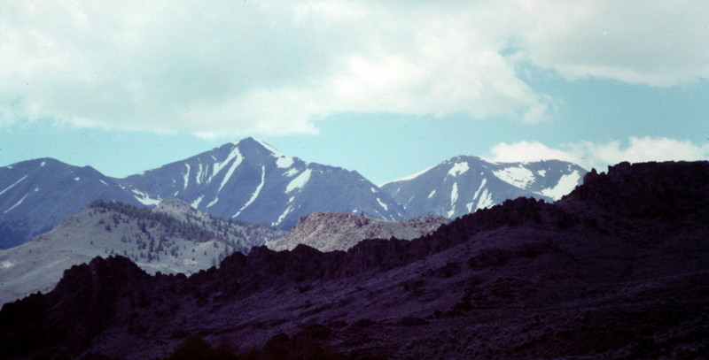 The high peaks of the White Knob Mountains viewed from Alder Creek.