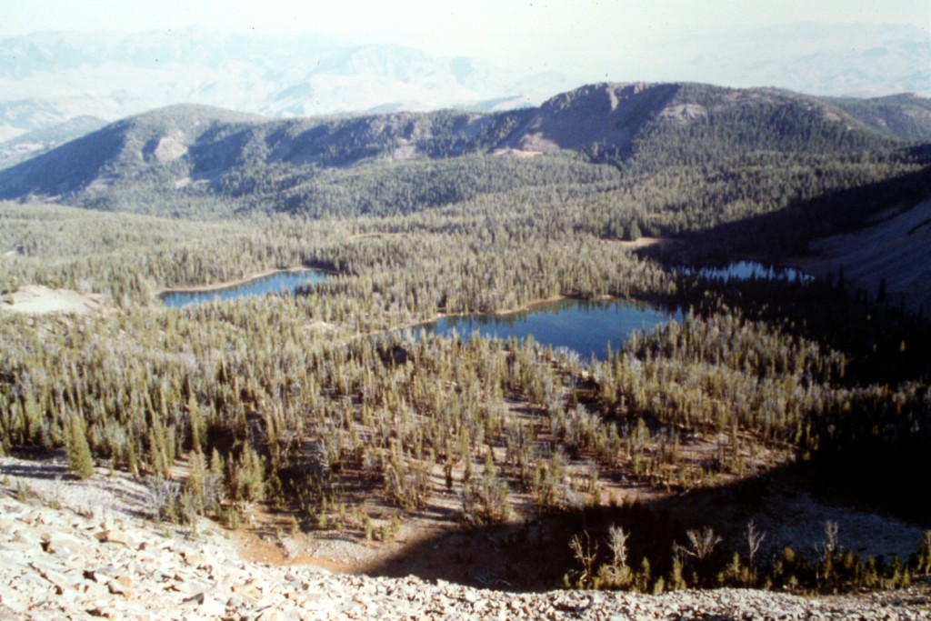 Hat Creek lakes viewed from the summit of Taylor Mountain.