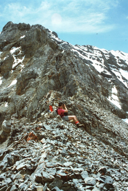The unclimbed north ridge of USGS.