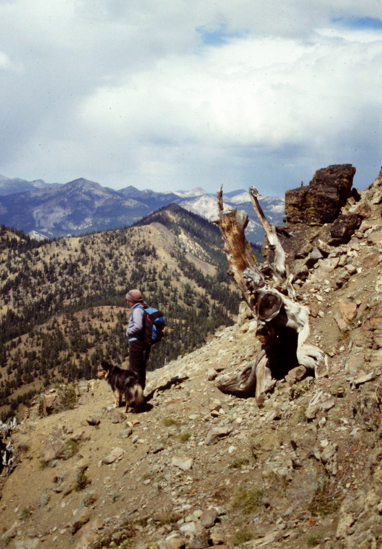 This shot will give you an idea of the terrain found on the upper slopes of Custer Peak.