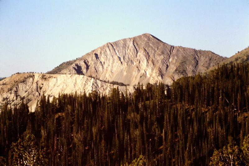 Horton Peak from east.
