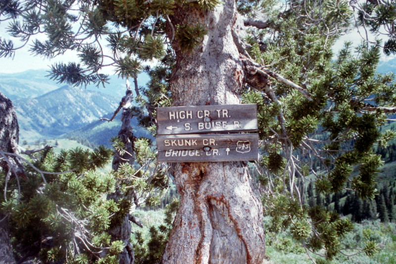The Boise National Forest map shows many trails but they are not always easy to find as a lot of trailheads are not marked and many trails have not been maintained in years.