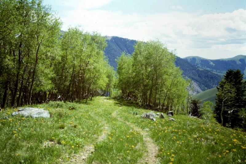 Pioneer Mountains Idaho A Climbing Guide