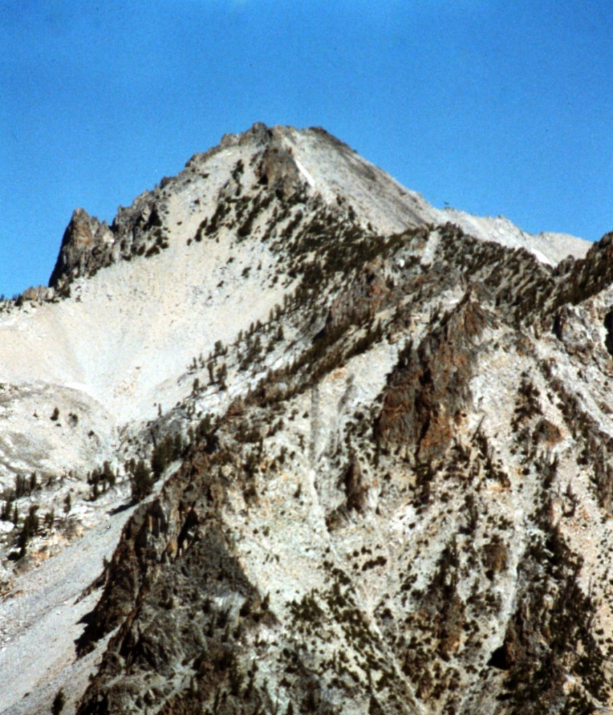 Mount Carter viewed from the upper reaches of the Fishhook drainage.