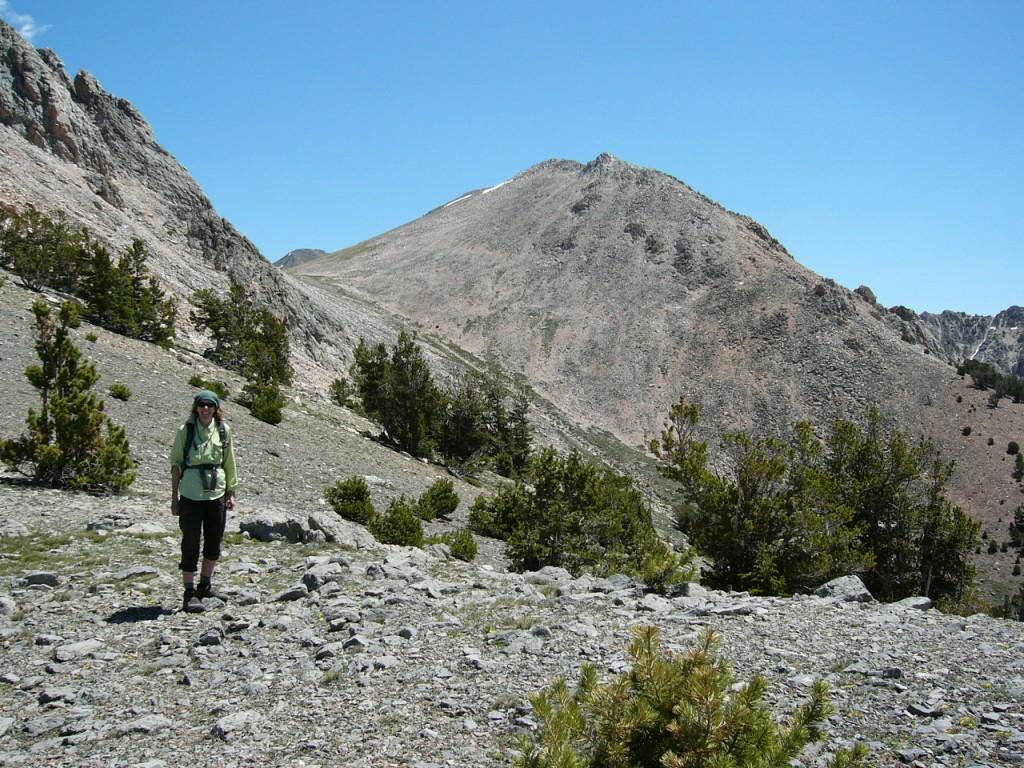 Peak 10695 from southwest ridge of Nicholson.