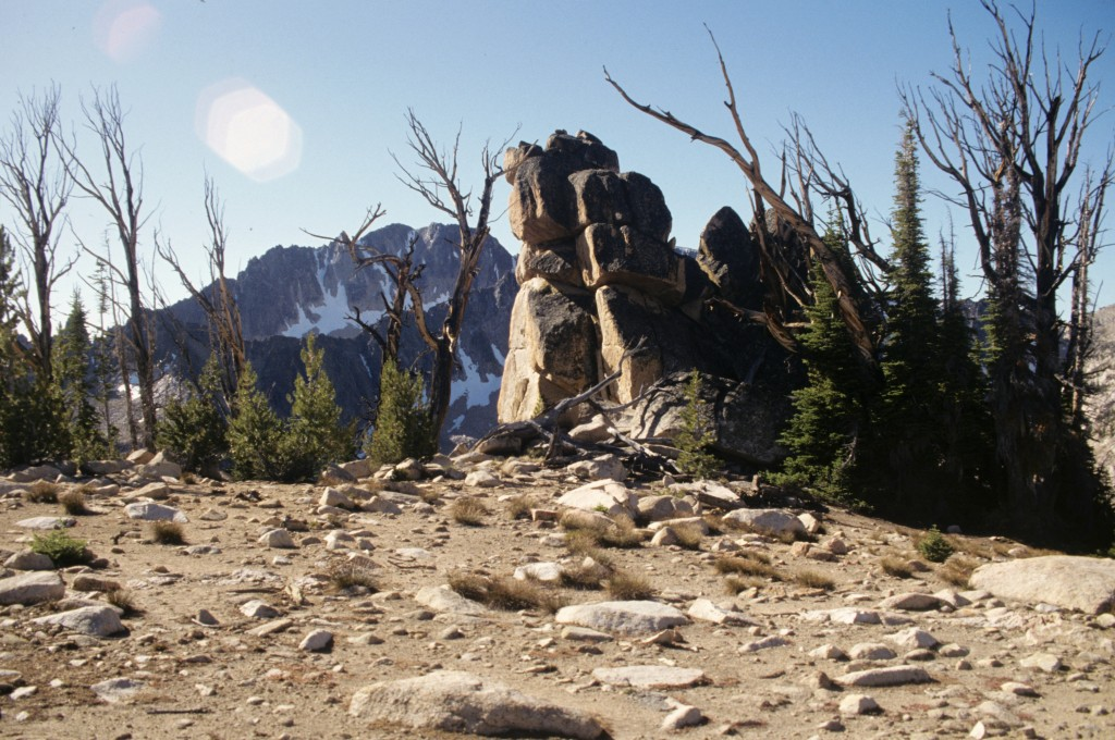 The summit plateau of the Elephant's Perch.