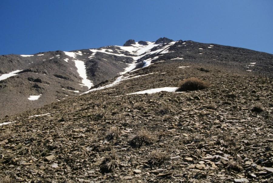West Rib of Petros Peak.