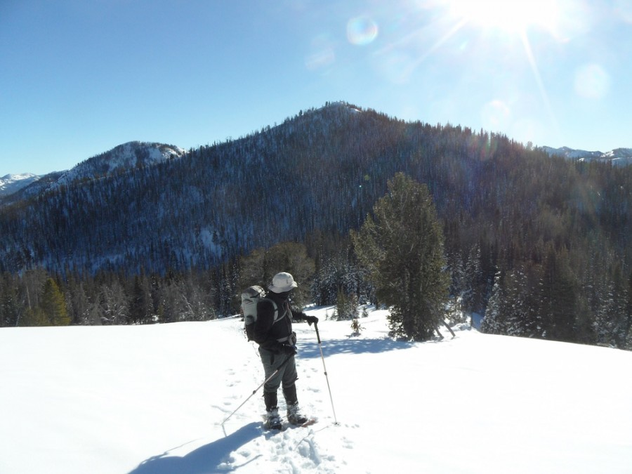 Sawtooths, Sawtooth Range, snowshoe