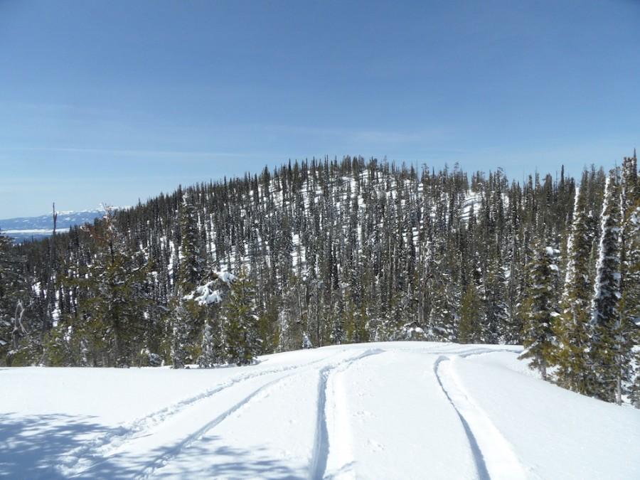 Peak 7789 from tue south. John Platt Photo