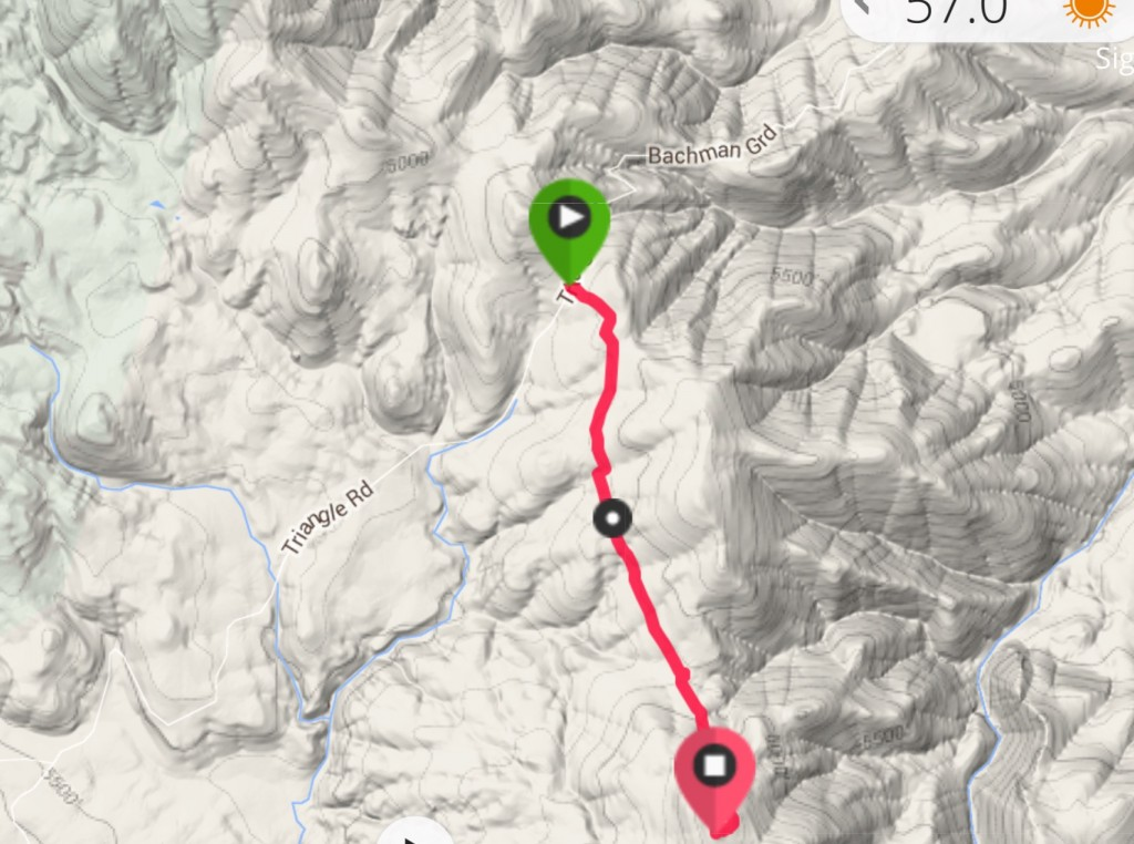 My GPS track from Toy Pass to the summit.