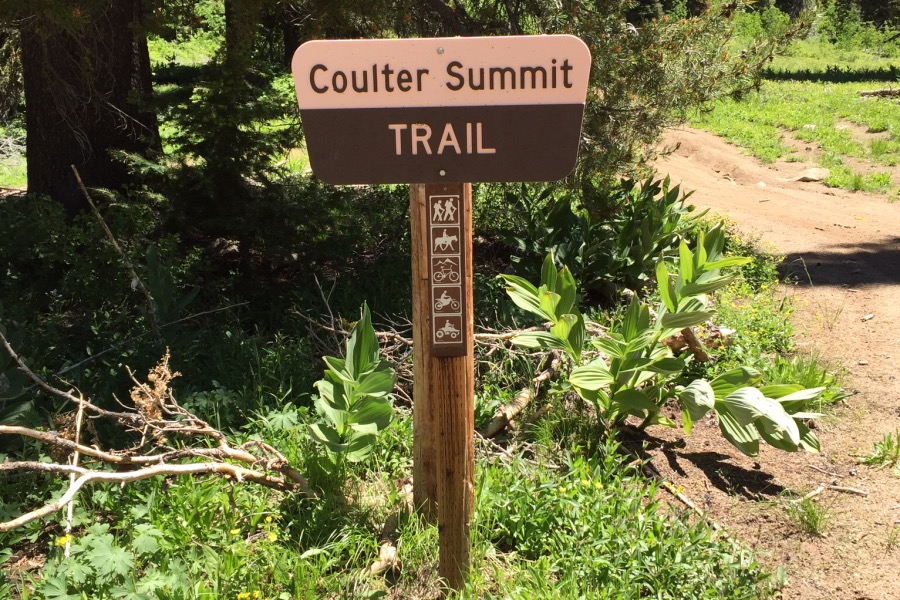 In addition to climbing Jackson Peak from Coulter Summit you can follow a trail south to Wilson and Pilot Peaks.