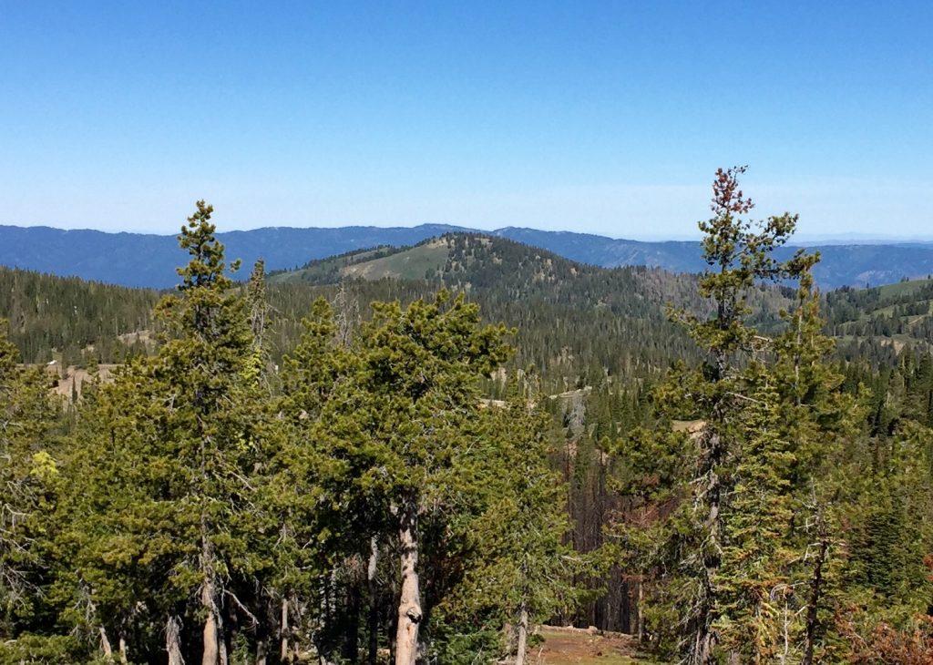 Wilson Peak from Pilot Peak.