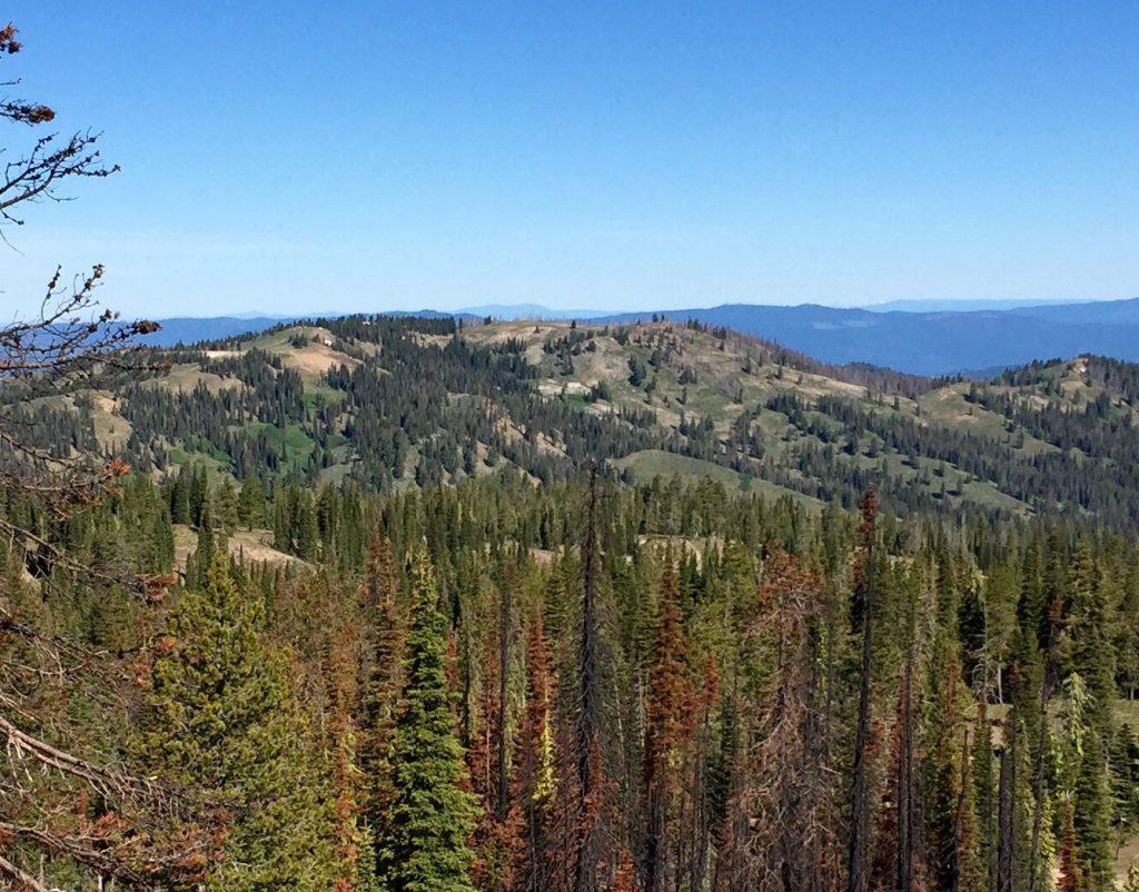 Peak 7905 from Pilot Peak.