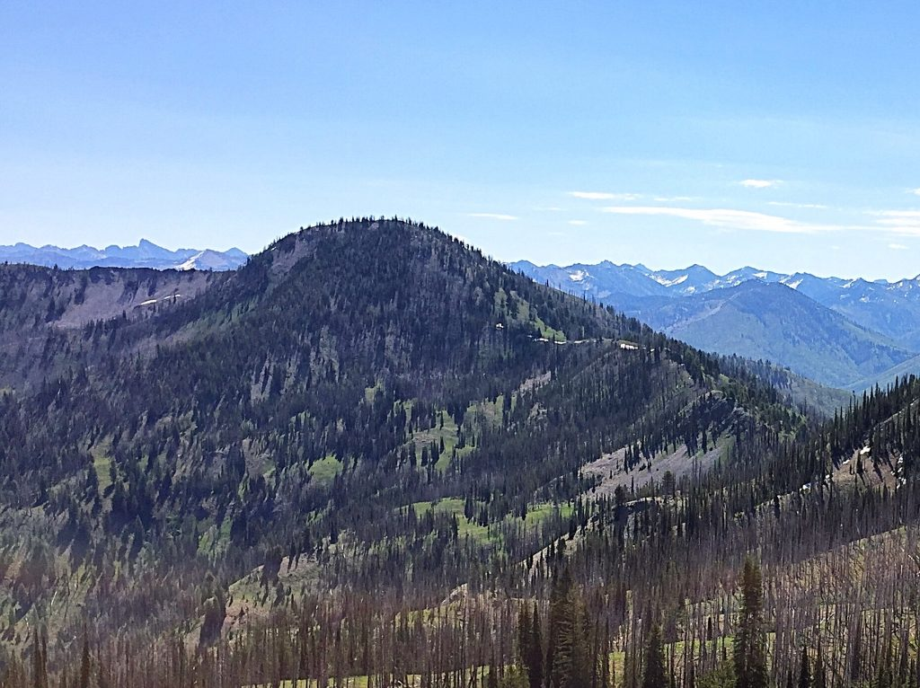 Tyee Mountain from Peak 8498.