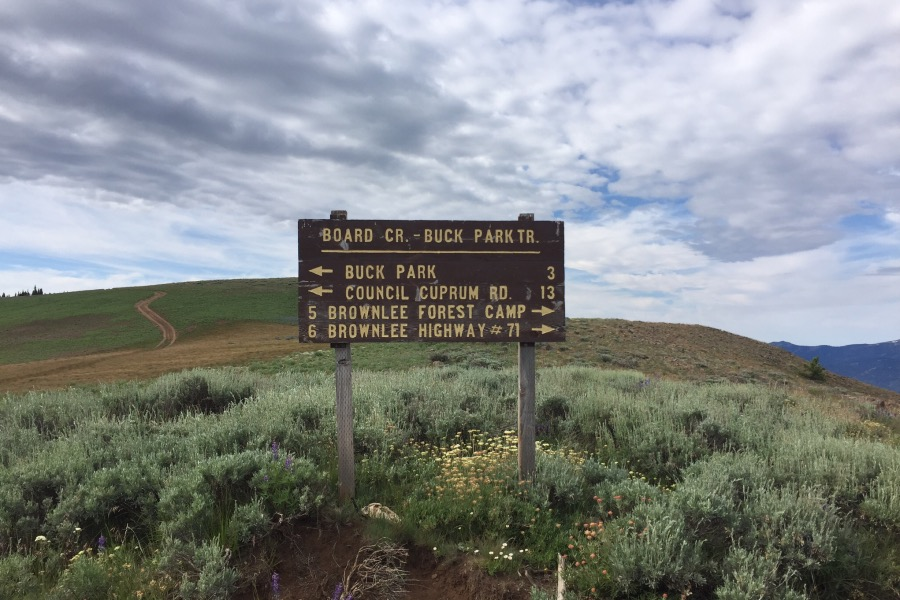 The sign on the saddle between Cuddy Mountain and Cuddy Point.