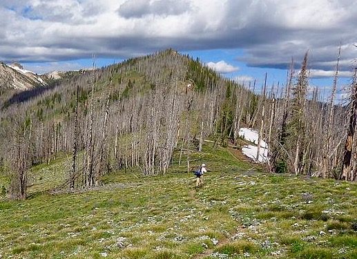 Approaching Peak 8817 along the Big Baldy Ridge trail. Dave Pahlas Photo