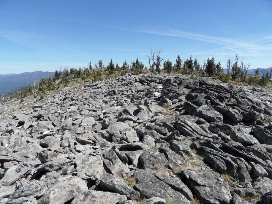 The broad summit of Lower Black Tip Mountain. John Platt Photo