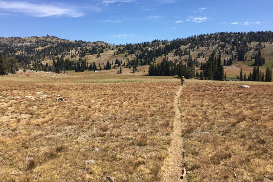 The west side of the West Mountains harbors beautiful granite studded meadows reminiscent of the Sierra Nevada.