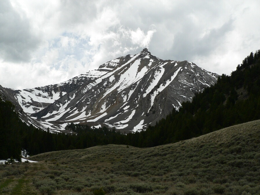 Doublesprings Peak from Cayuse Canyon. Dan Robbins Photo