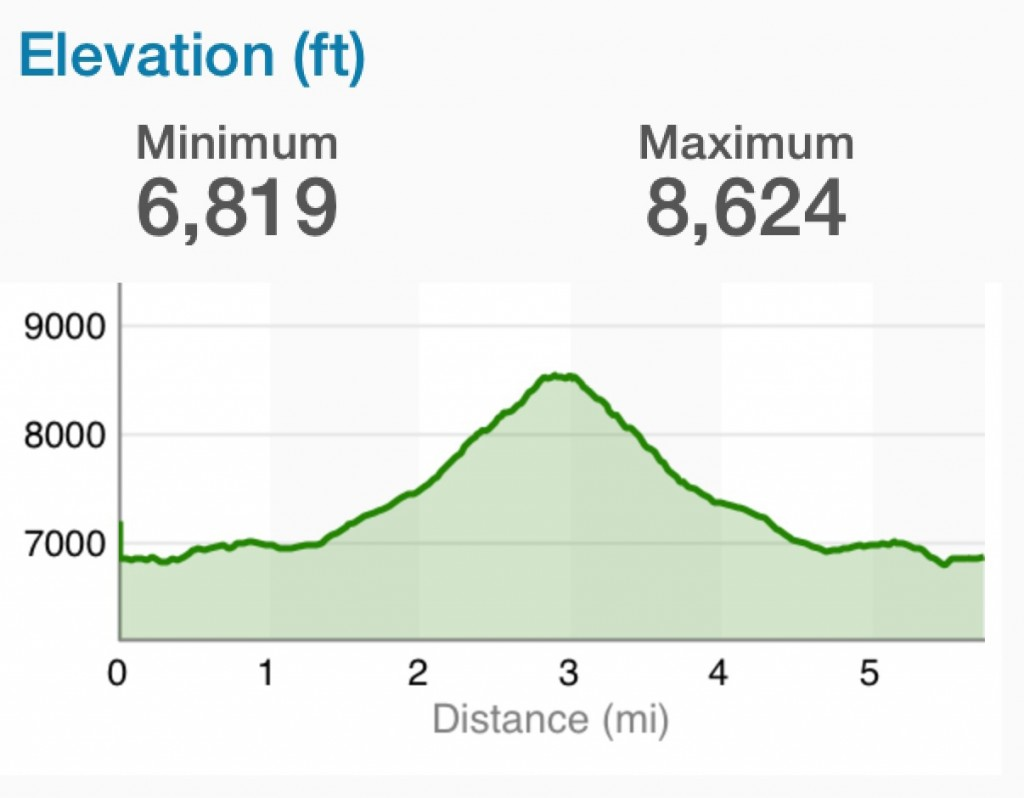 Elevation  Profile.