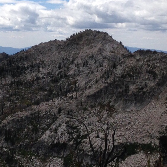 Beaverdam Peak from the east ridge of Burnside Peak.