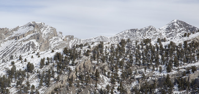 Peak 10401 on the left and Tyler Peak on the right. Larry Prescott Photo
