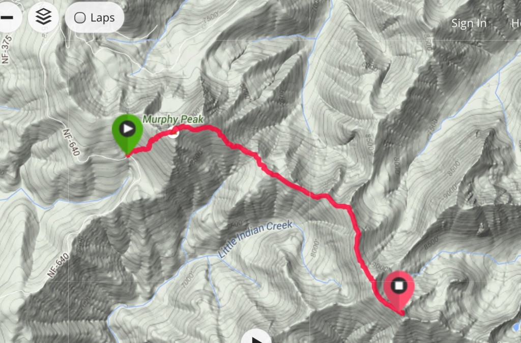 This is my GPS track for the climb up Murphy Peak and Red Mountain Benchmark.