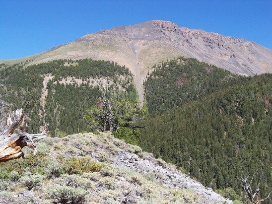 "SW aspect of Tuscany Peak as seen from 'Little Caesar' 9041' (forks of Italian Canyon) on 7/29/11. Tuscany summit is on right, about in center of ragged portion."" Rick Baugher Photo"