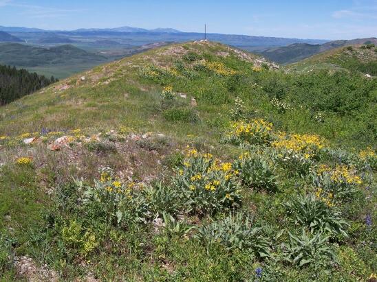 Summit Wooley Range HP, 7796'. View NW past Blackfoot Reservoir to South & North Putnam peaks on horizon.