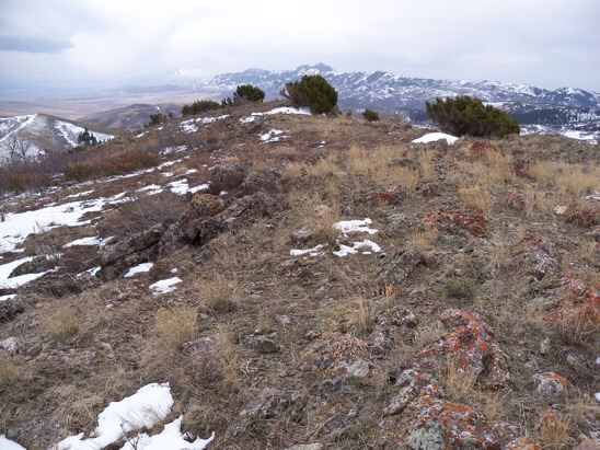 Summit of 7047. View south to the real Malad Range highpoint, Gunsight Peak. Cache Valley on left. Rick Baugher Photo