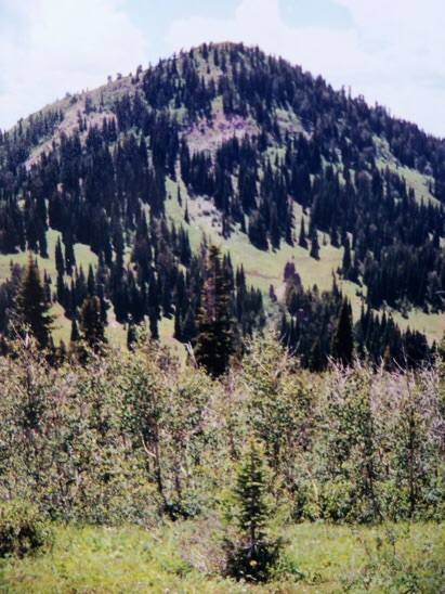 View S to Temple Peak from Thousand Springs Valley. NE ridge seen on left, 7/12/01. From US Hwy 26 along Antelope Flat you get one good fleeting view of Temple Peak. Otherwise, this is a shy one, preferring to stay hidden. Rick Baugher Photo