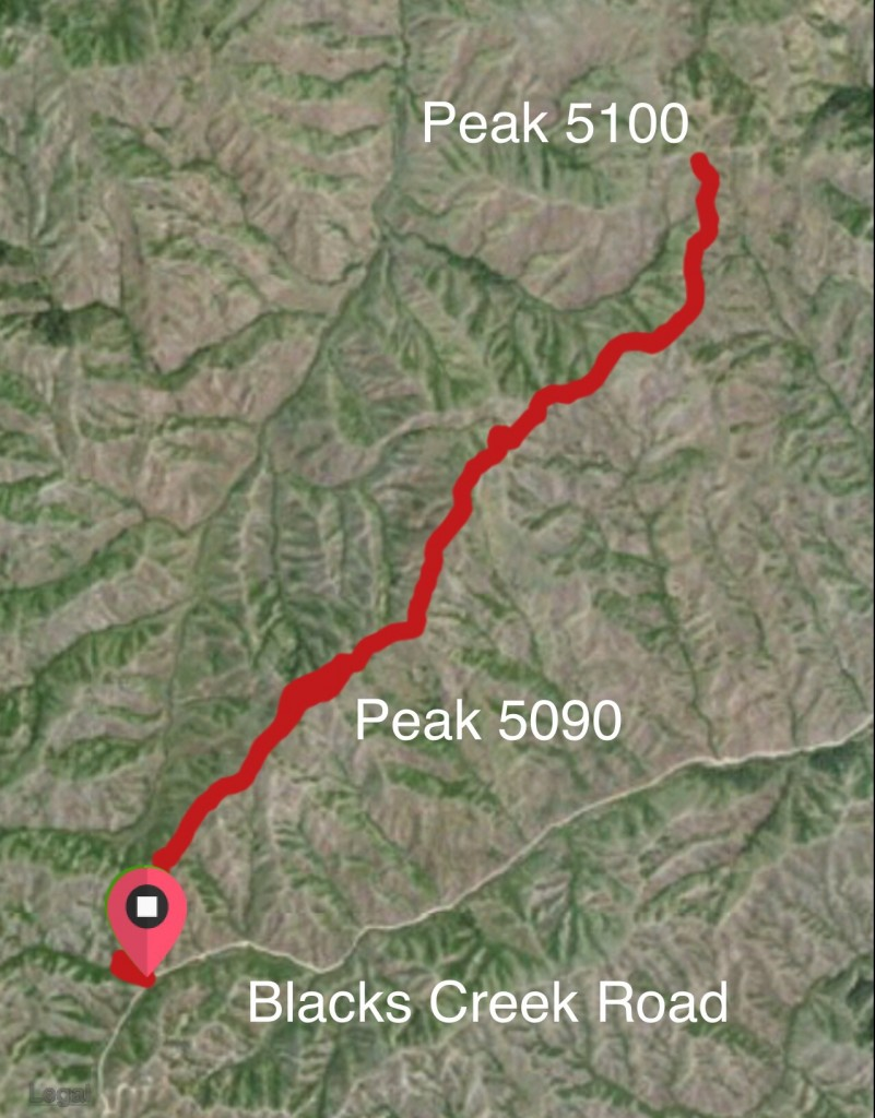 Peak 5096 and Peak 5100. My GPS track from 2015.