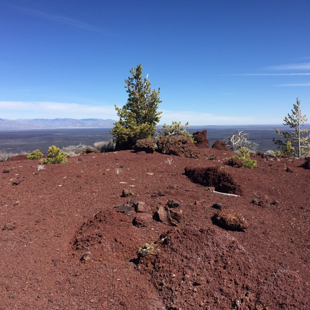 The summit of Big Cinder Butte.
