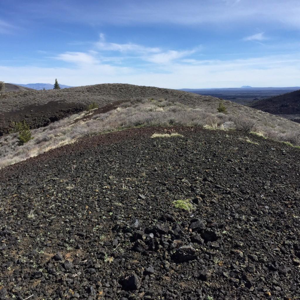 The summit of Grassy Cone.