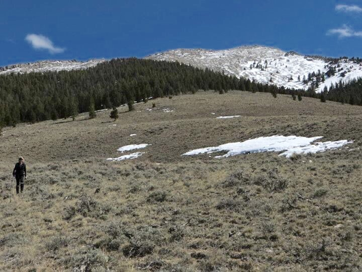 Looking toward the summit and the peak's northeast ridge. Steve Mandella Photo