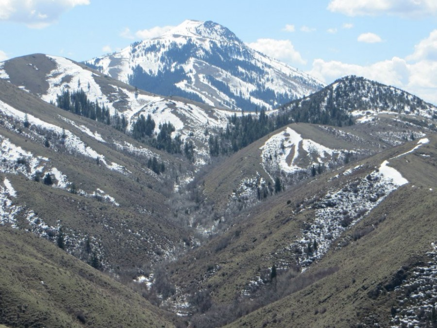 Scout Mountain viewed from Indian Mountain. Steve Mandella Photo