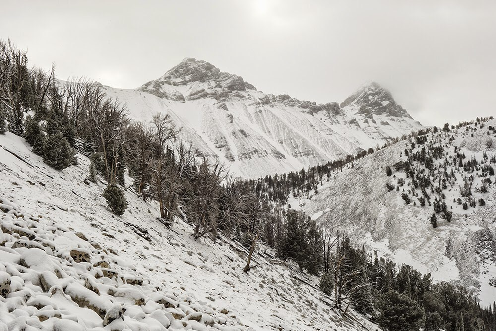 Bad Rock Peak and Mount Church on a snowy day in April, 2015. Larry Prescott Photo