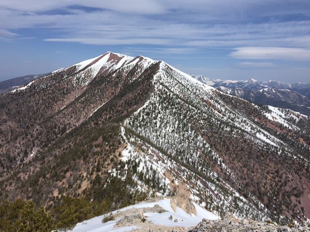 Bear Mountain from Peak 10122. The entire traverse is visible in this photo.